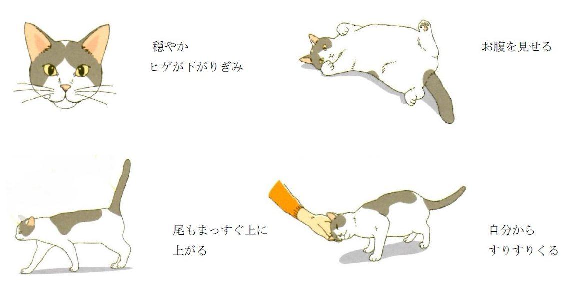 小山 コラム3
